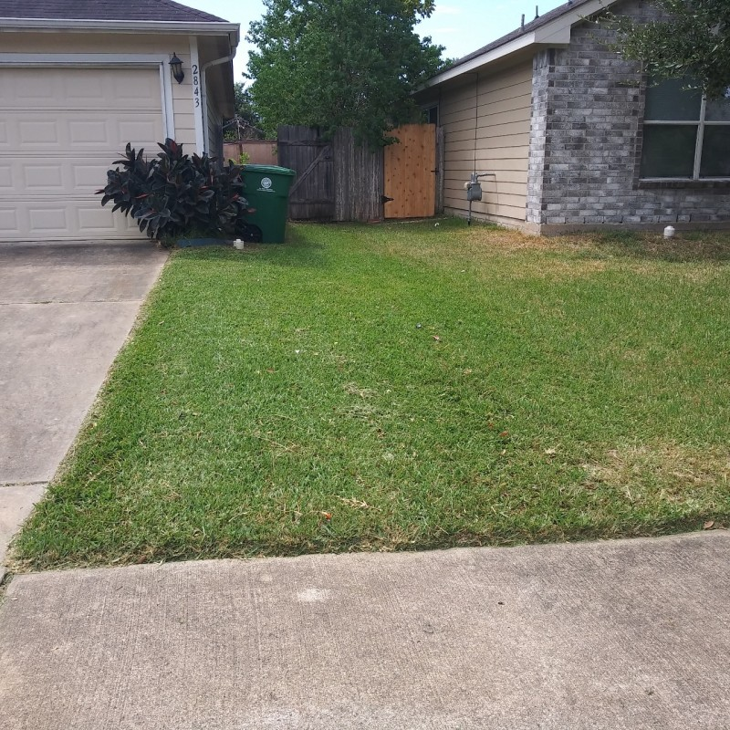 Lawn care service  in Carrollton TX